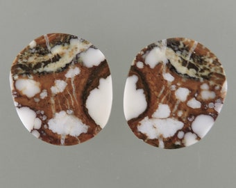 Wild Horse Cabochons, Wild Horse Cabs, White and Brown Earring Cabs, Designer Wild Horse, Gift Cabs, C3115, Hand Cut by 49erMinerals