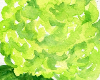 Hydrangeas watercolors paintings original, 4 x 6,  Lime Green art, hydrangea painting, original hydrangeas watercolors flowers