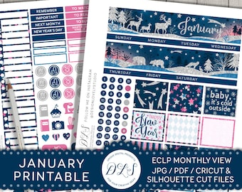 Printable January Planner Stickers, January Monthly Kit, EC January Planner Stickers, January Monthly View, January 2018 Stickers, MV117