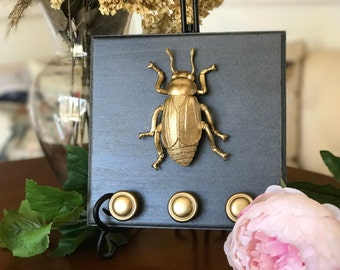 Beetle/Insect Jewelry Holder, Gold Faux Insect Taxidermy, Wall Art, Home Decor