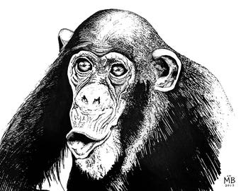 Chimp Off The Old Block