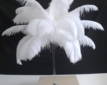 100 White Ostrich Feather  for Wedding centerpieces