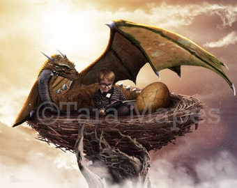 Dragon Nest Digital Background / Backdrop