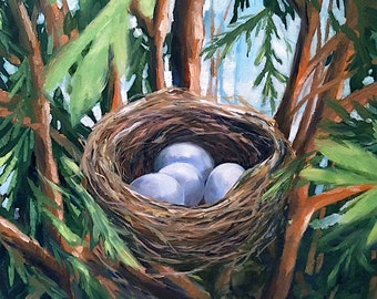 Cypress Tree Nest