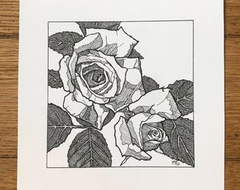 Roses - pen and ink illustration