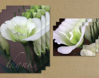 Thanks, Flower Greeting Card Combo Set, White Flower Thank You Card, Flower Notecard Set, Benefiting St. Louis Area Foodbank