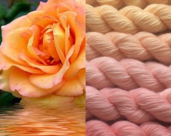 Gradient yarn set -  merino wool, handdyed yarn 150g- hand painted dyed sock shawl ombre -Tea rose  colors.