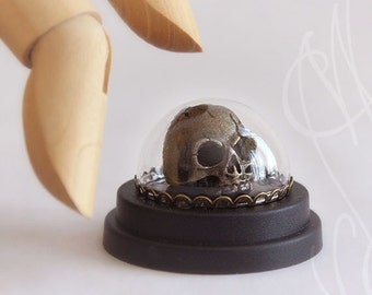 "Strange skull with a semi-precious stone (Garnet), presented under glass "" Skull """
