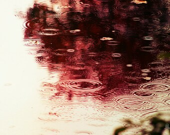 "Water Photography, Rain, Pond, Autumn, Red, Reflection, Raindrops, 6x9, 8x10 or 8x12. ""October Rain""."