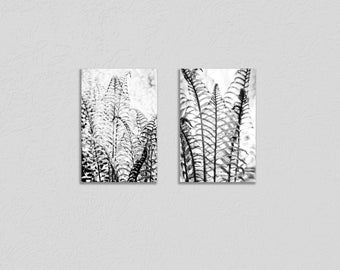 Fern Leaves Black and White Minimalist Botanical Wrapped Canvas Photo Print DipTych, Semi Abstract Monochrome Nature Wall Art