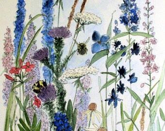 Wildflower in Garden Watercolor Flower Print Illustration Painting