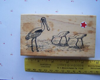 Rubber stamp from Rubber Dub Dub; Spoonbills, water birds