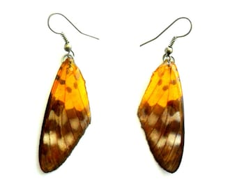Real Butterfly Wings Earrings Handmade Jewelry Gift / Yellow Black / Natural Jewelry Earring