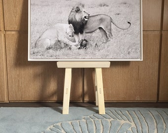 Photograph of a pair of lions in the Middle Africa - Tanzania
