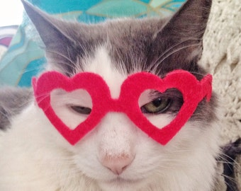 Heart-Shaped Glasses for Cats ; My Kitty Valentine cat glasses