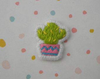 Miniature Cactus Patch
