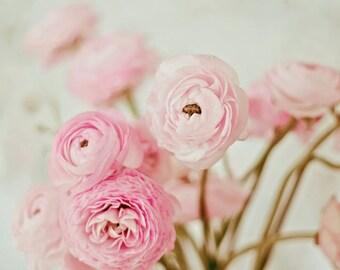Ranunculus Print, Ranunculus Flower, Nature Photography, Girls Room Art, Nursery Art, Flower Photography, Ranunculus Photo, Pink