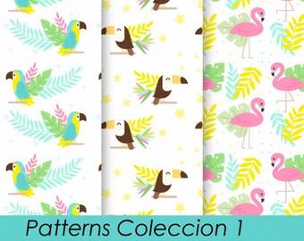 Printable Kit background birds + Digital paper