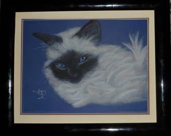 Portrait pastel of a sacred cat of Burma: pensive