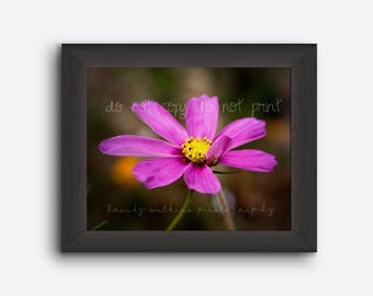 Purple flower photography print, flower wall art, flower decor, flower wall decor, flower photo print, decor for home, decor for girl's room