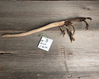 One of a kind driftwood from the Mississippi River Valley