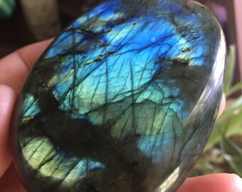 XL Labradorite Palm Stone | Spectralite | Reiki Love Infused | Spiritual Junkies | Healing Crystal | Gemstone