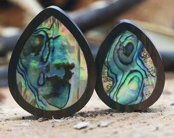 Abalone Teardrop Plug