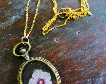 Preserved Phlox Botanical, Oval Antique Bronze Pendant Necklace