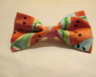 Nigel's *New* Summertime Watermelon Bow Tie!  Yum Yum!