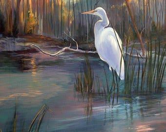 Snowy Egret, Morning Light