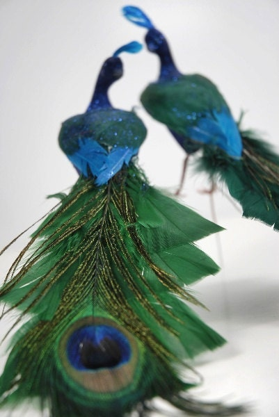 Pair 2 8 inch Wedding Teal Green/Blue Peacock Feathers Bird