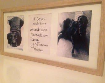 Memorial Pet Remembrance Frame
