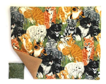 Catnip Mat plus Catnip  Cats in Grassy Field  Refillable Reversible