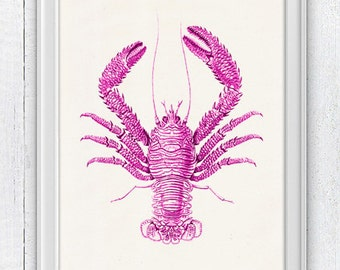 Lobster print - Wall decorOcean life art fuchsia Lobster n03- sea life Sale buy 4 get 5- Marine sea life illustration SAS029