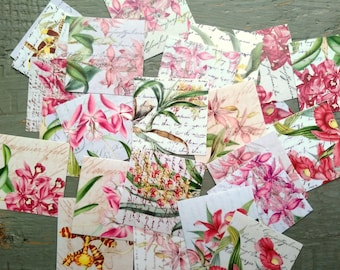 "25 Orchid Stickers, 1.5"" or 2"" squares, Pink Flower stickers, Vintage Inspired Floral Stickers, journal planner stickers, 100% recycled"