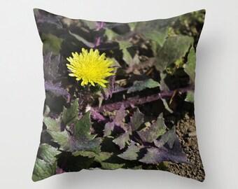 Yellow Dandelion Photo Pillow, Nature Photograph, Home Decor Pillow Cover 18x18, Floral Fireworks 3