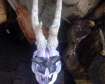 Lilac butterfly skull and antlers