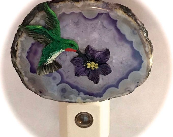Agate Night Lights  Sensor w 7 watt bulb Hand Painted Oils Hummingbird Night Light