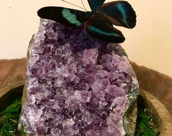Amethyst with butterfly