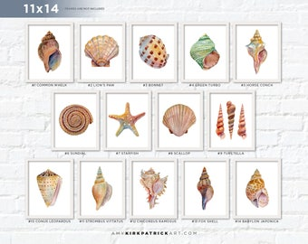 Sea Shell Paintings, Pick One 11x14 Print, Shell Print, Watercolor Sea Shell Print, 11x14 Shell Print, Shell Wall Decor, Shell Wall Art