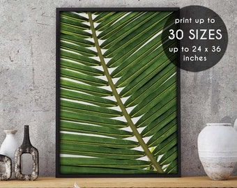 Palm wall art, palm wall print, palm leaves, palm printable, botanical print, wall decor, home decor, tropical art, palm leaf, black, 26