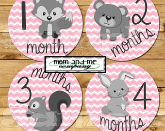 Baby Girl Monthly Stickers baby Girl Stickers Month Milestone Stickers Baby Month Stickers Monthly Bodysuit Stickers Woodland Forest Animals