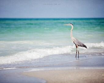 Beach Decor Wall Art, Ocean Print or Canvas Art, Ocean Print, Sea Blue, Turquoise, Heron Print, Nautical Print, Aqua, Turquoise, Blue.