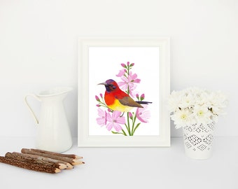 Printable Art - Colourful Bird Print, Sunbird Painting | Colourful Art, Bright Apartment Decor, Bird Painting, Pink Flowers, Watercolour Art