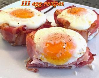 Omelet etsy 111 egg recipes delightful food homemade ebook pdf digital dowload resale rights forumfinder Images