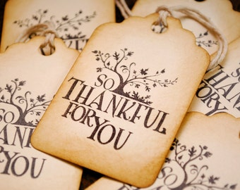 So Thankful For You Vintage Style Tags Set of 6