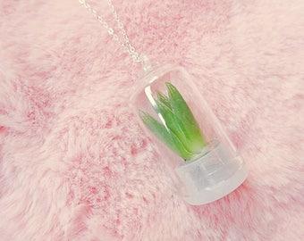 Living Cactus Succulent Wearable Plant Terrarium Pendant Necklace Jewellery Jewelry