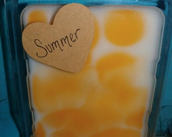 Summer Scented ClamShell Wax Melts- Scented Wax- Wax Melts- Home Decor- Warmer Melts - Warmer Wax- Clean Melting