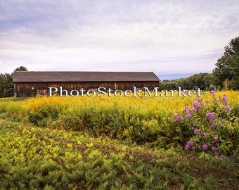 Wild Flower Landscape - Tobacco Barn -  Photography Backdrop - Photoshop - New England Field - Digital backdrop