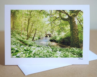 7 x 5 Beautiful Handmade Photography Greetings card Wild garlic by the river Spring